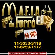 Mafiadoforroaovivo